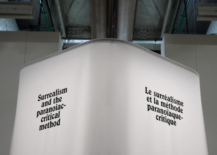 dali_centre_pompidou_10